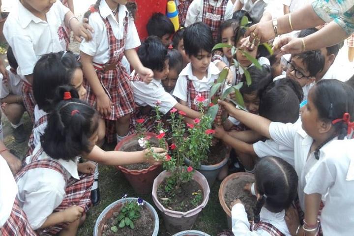 Aanchal International School-event1