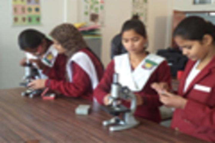 Ram Prasad Bismil Memorial Public School-Labs