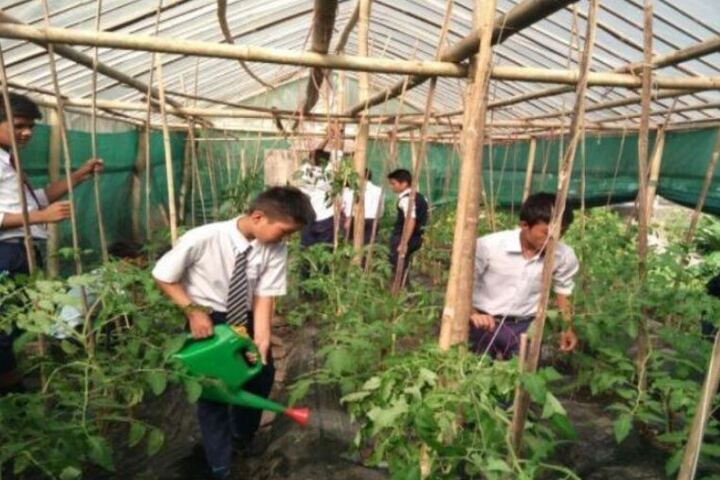 Government High School-Watering Plants