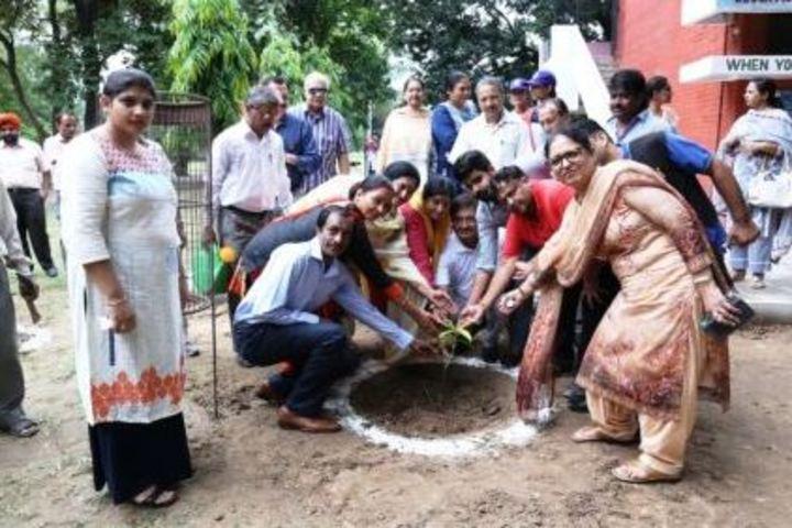 Government Girls Senior Secondary School-Planting Tree