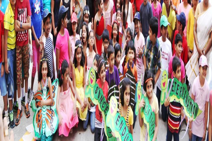 Gitanjali Devashray-Activity