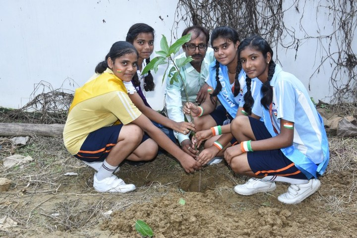 Seth M R Jaipuria School-Tree Plantation