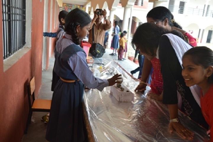 Shiv Shakti Public School-Exhibition