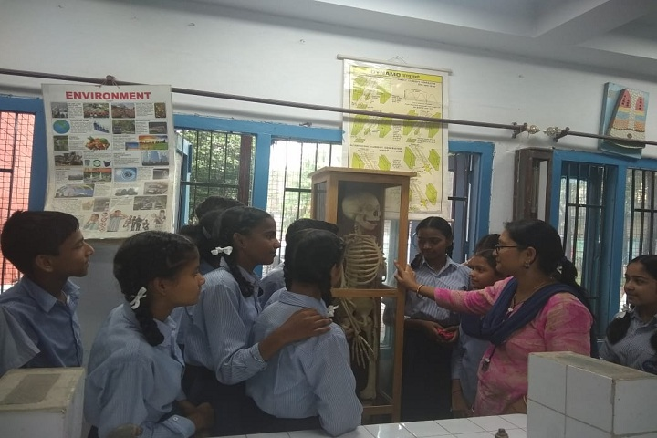 Govt High School-Library biology