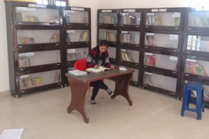 Shri Guru Nanak Public School-Library