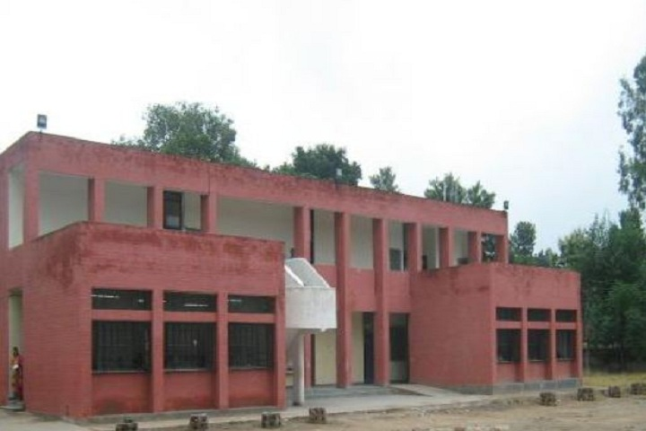 Government High School-School View