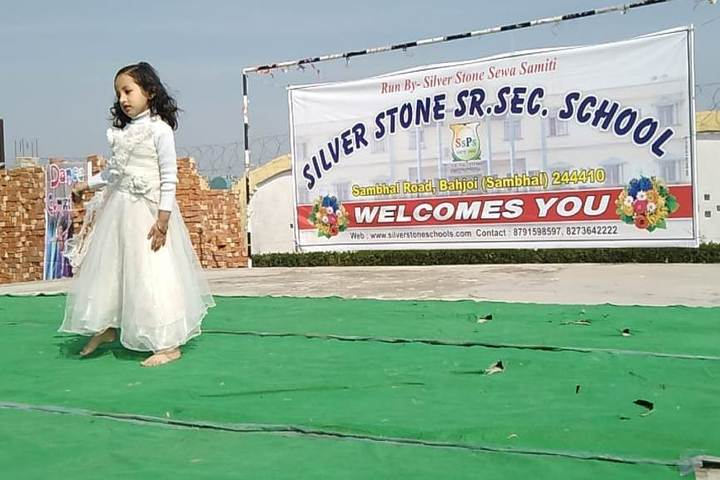 Silver Stone Public School-Dance Competition