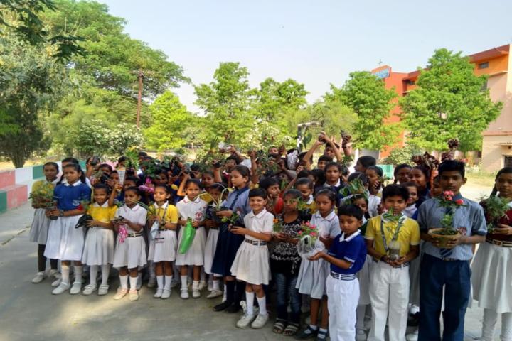 St Francis School-Earth Day