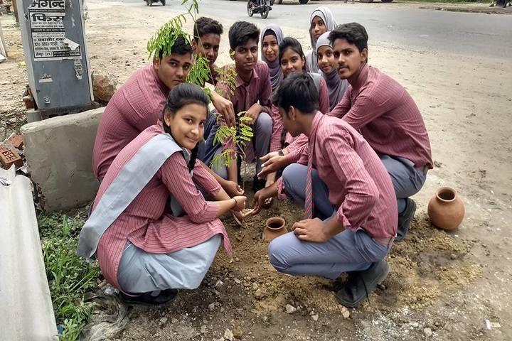St Joseph School-Tree Plantation