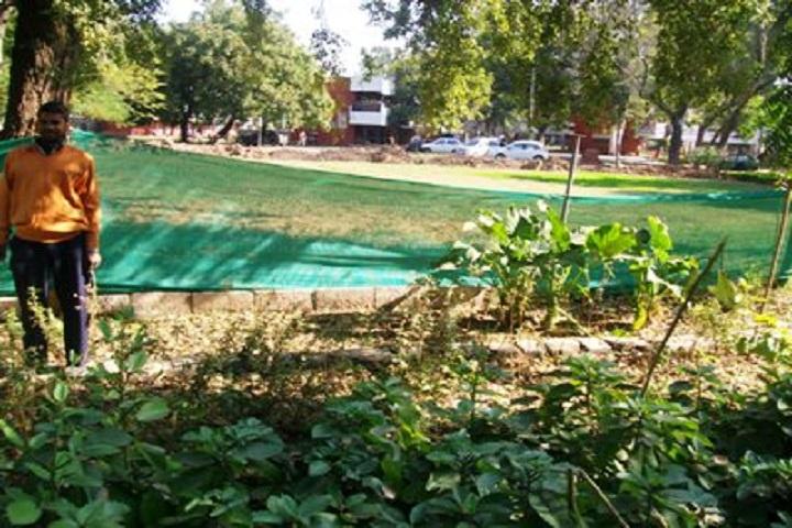 Goverment Model High School-Herbal Garden