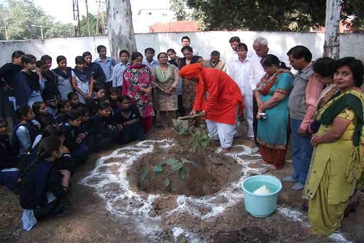 Government Model High School-Tree Plantation