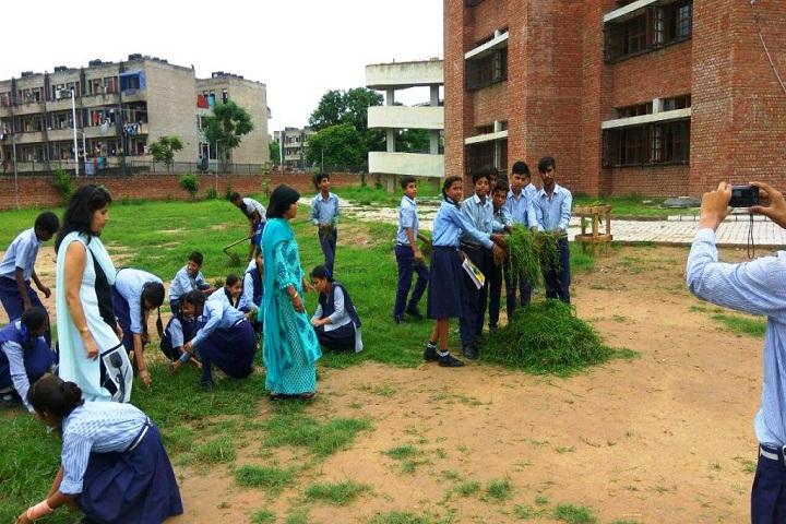Government Model High School-1-Swachhta