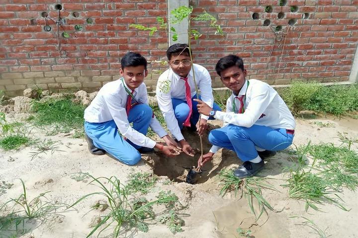 St Xaviers High School-Tree Plantation
