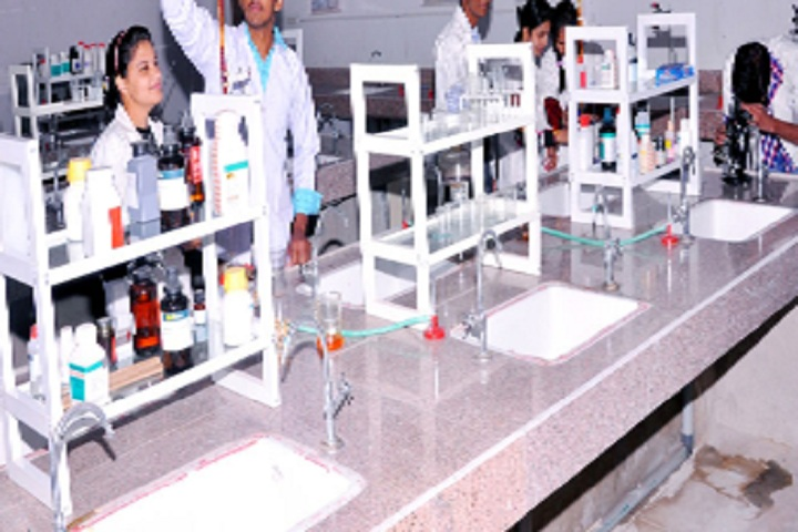 St Xaviers High School-Lab