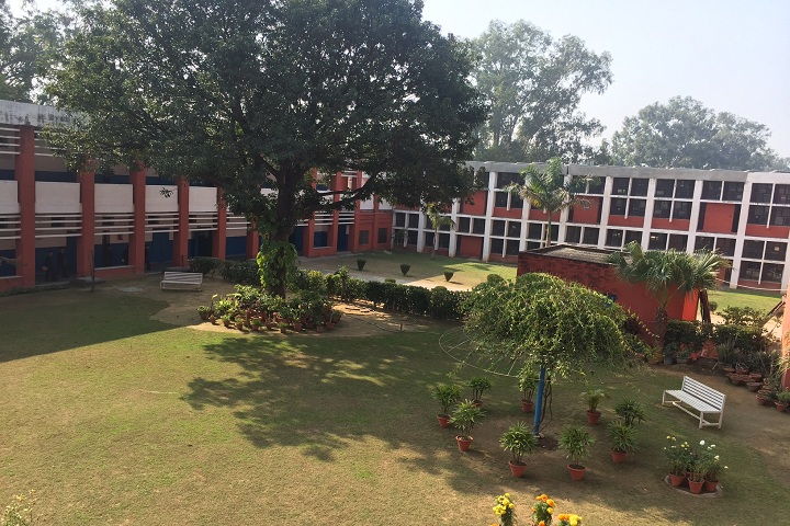 Government Model Senior Secondary School-Campus View