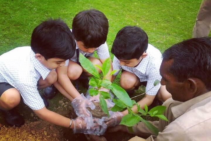 Summer Valley School-Plantation