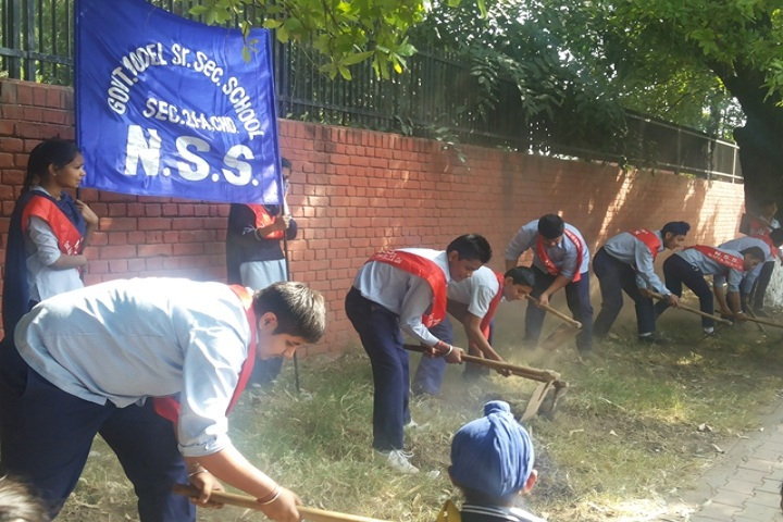 Government Model Senior Secondary School-NSS Camp