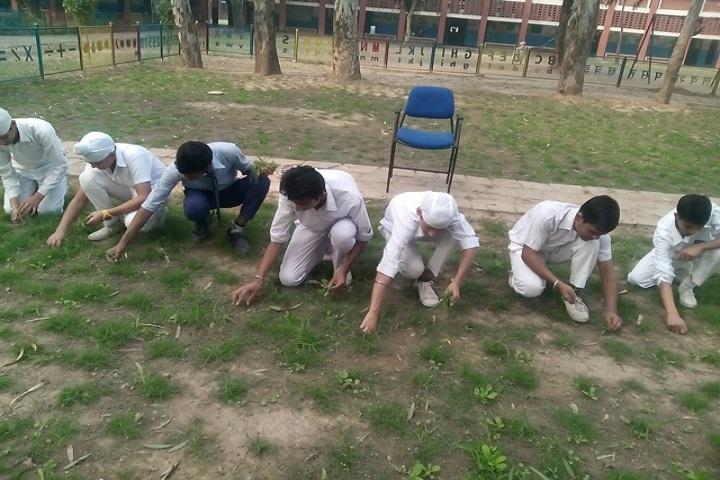 Government Model Senior Secondary School-Swatchh Bharath Abhiyan