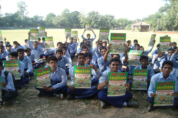 Government Model Senior Secondary School-Activity