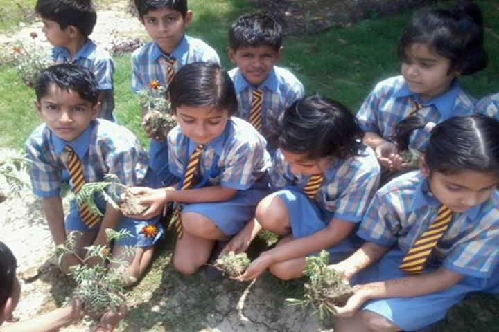 Surevin International School-Plantation