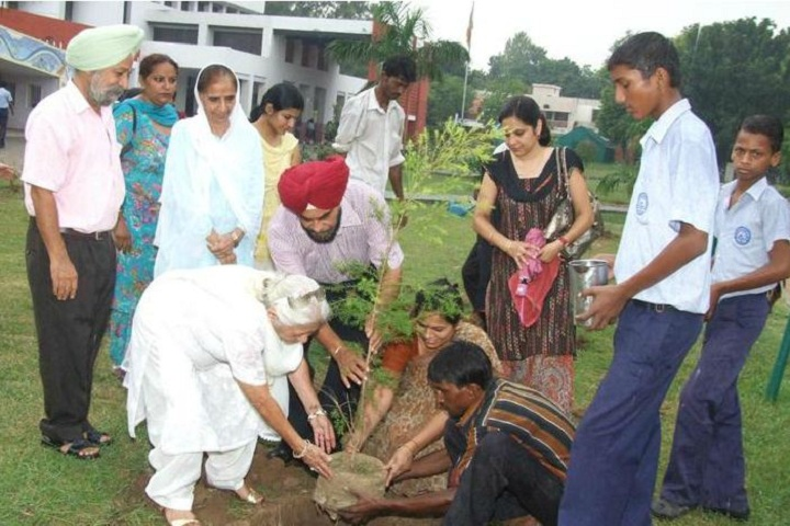Government Model Senior Secondary School-Tree Plantation