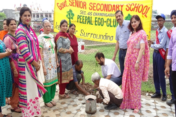 Government Senior Secondary School-Plantation