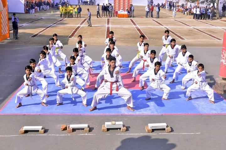 The Skyland School-Karate