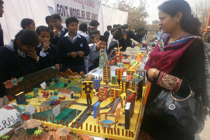 Government Model Senior Secondary School-Science Fair