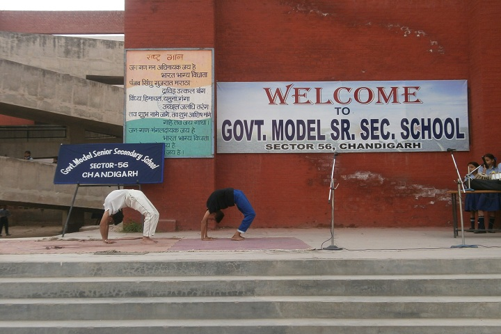 Government Model Senior Secondary School-Yoga Day
