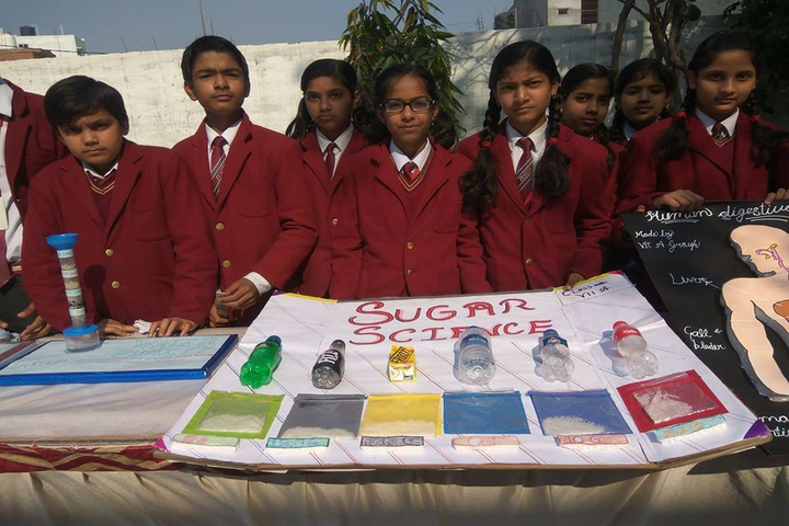Zenith Public School-School Exhibition