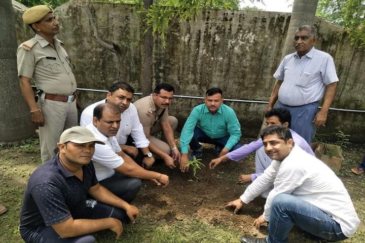 Amar Memorial Public School-Tree Plantation