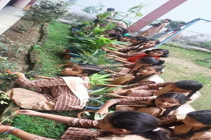Anand Swaroop Arya Sarawasti Vidya Mandir-Environment Day Celebrations