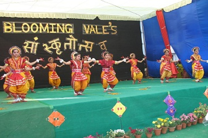 Blooming Vale Public School-Events1