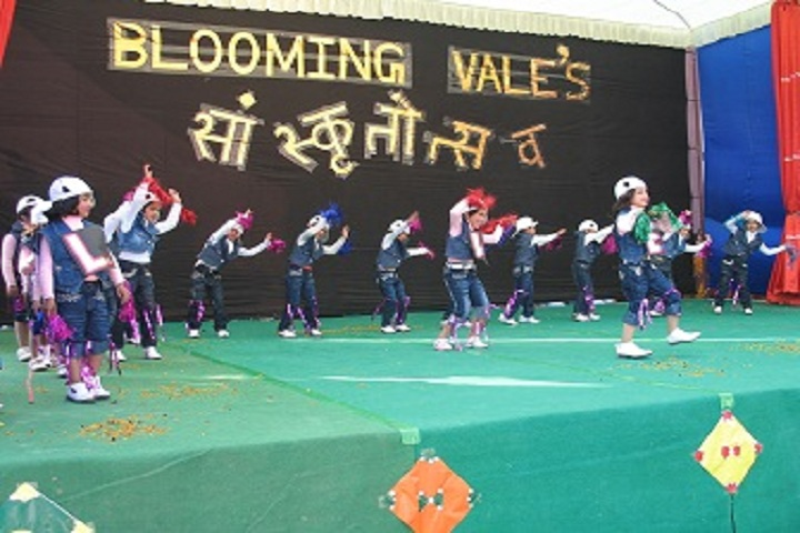 Blooming Vale Public School-Events2