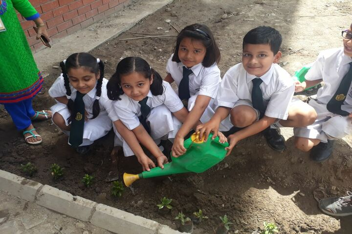 Delhi Public School-Green Day