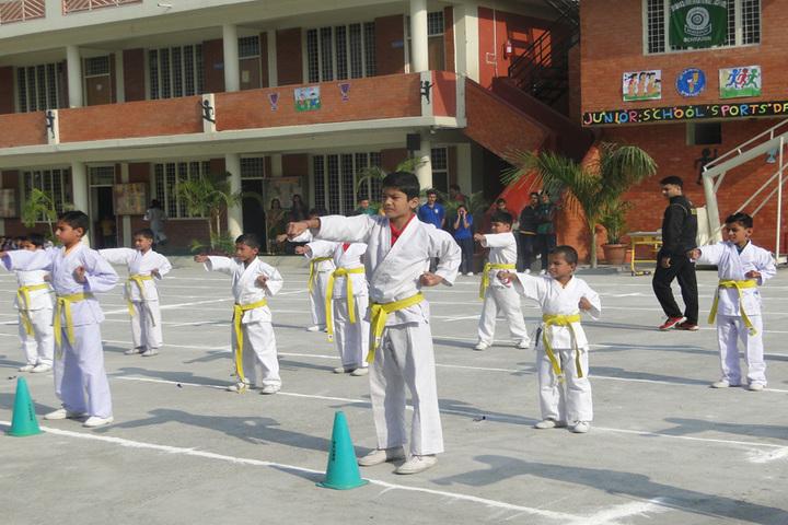Dronas International School-Taekwondo