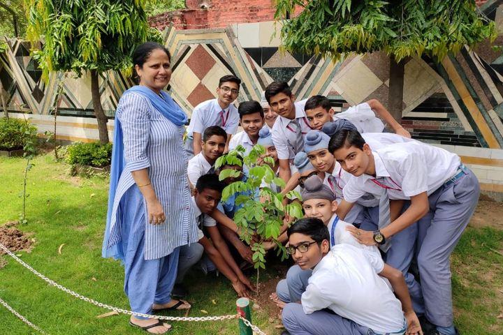 Maharishi Dayanand Adarsh Vidyalaya-Planting Tree
