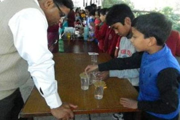 Grace Academy-Science Exhibition