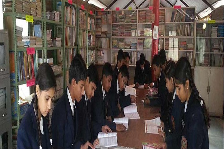 Great Mission Public School-Library
