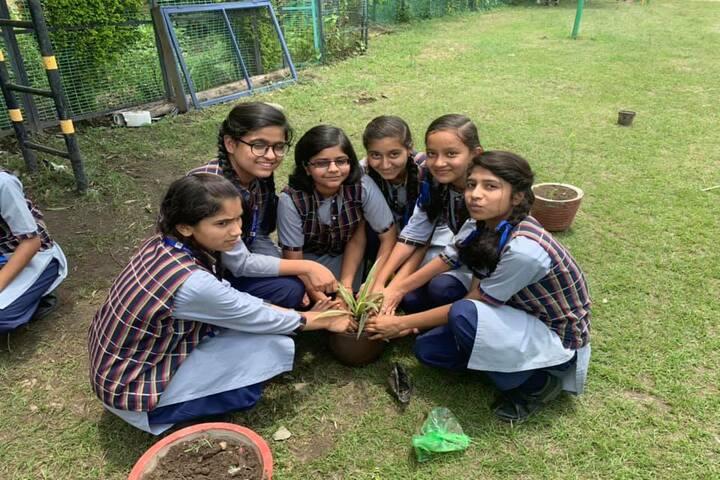Himalaya Vidya Mandir-Tree Plantation