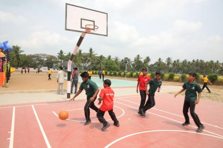 Green Field School-Basket Ball Court