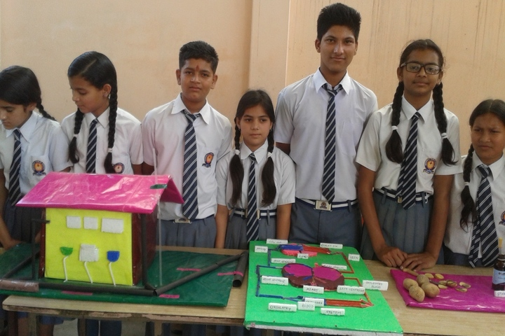 Hope Way Public School-Science Exhibition