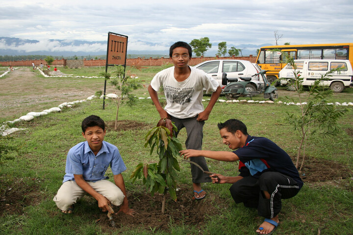 Information Technology Institute For The Tribes Of India-Tree Plantation