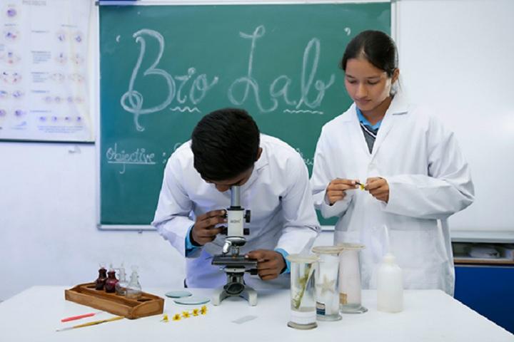 Little Scholars-Biology-Laboratory