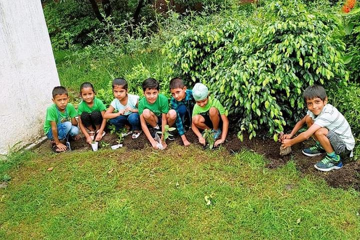 Little Scholars-Plantation