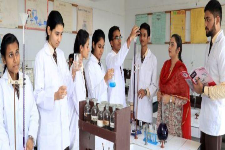Shishu Niketan Public School-Chemistry