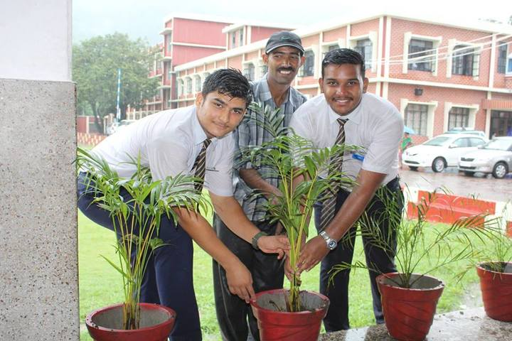 Nirmala Convent Senior Secondary School-Tree Planatation
