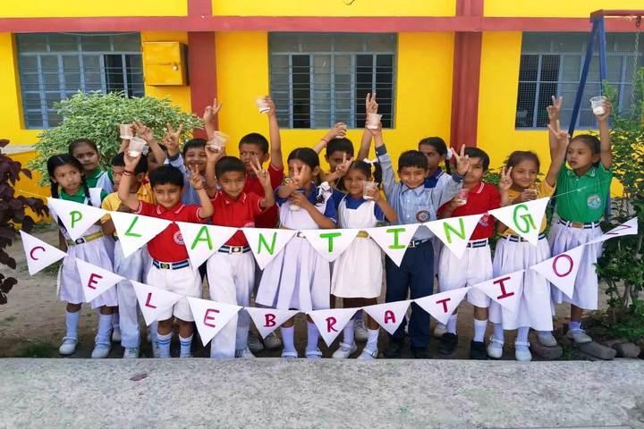 R C D Public School-Plantation Celebration