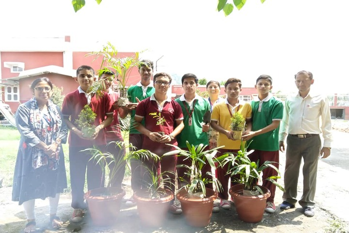 Saraswati Academy-Plantation