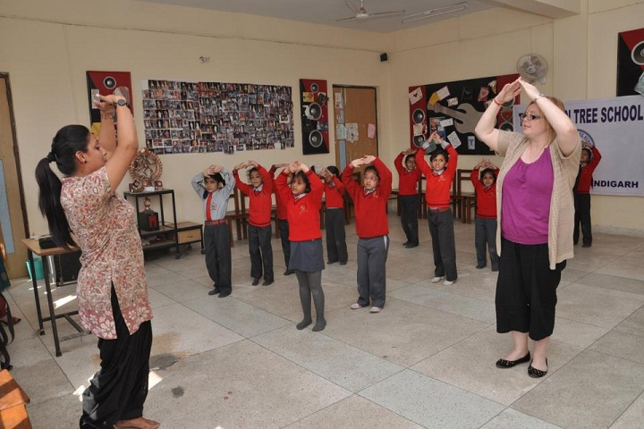 The Banyan Tree School-Dance class